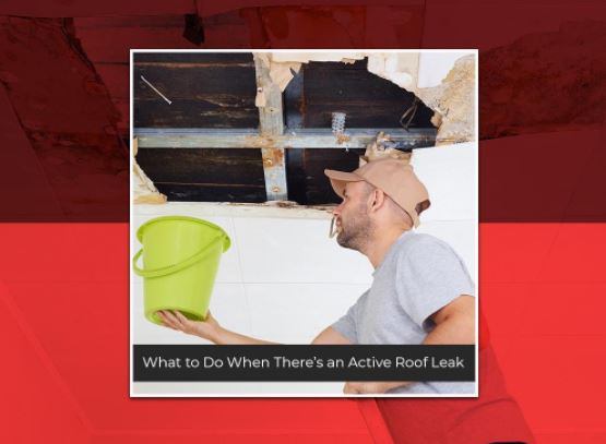 What to Do When There's an Active Roof Leak